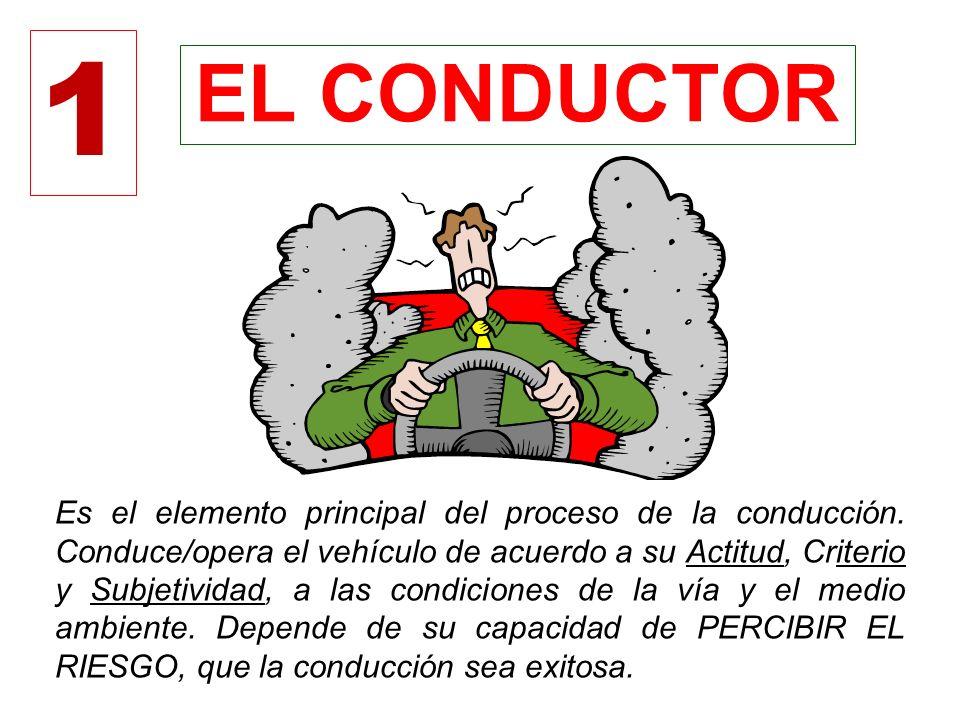 1 EL CONDUCTOR.