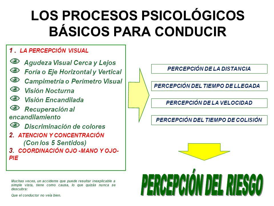 LOS PROCESOS PSICOLÓGICOS BÁSICOS PARA CONDUCIR