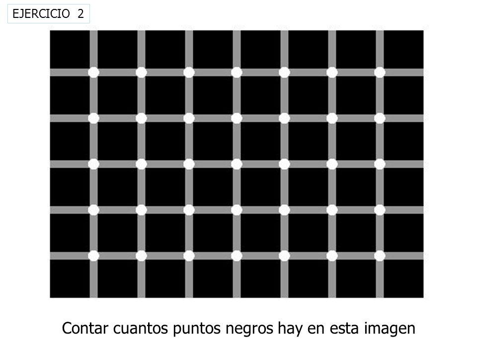 Contar cuantos puntos negros hay en esta imagen