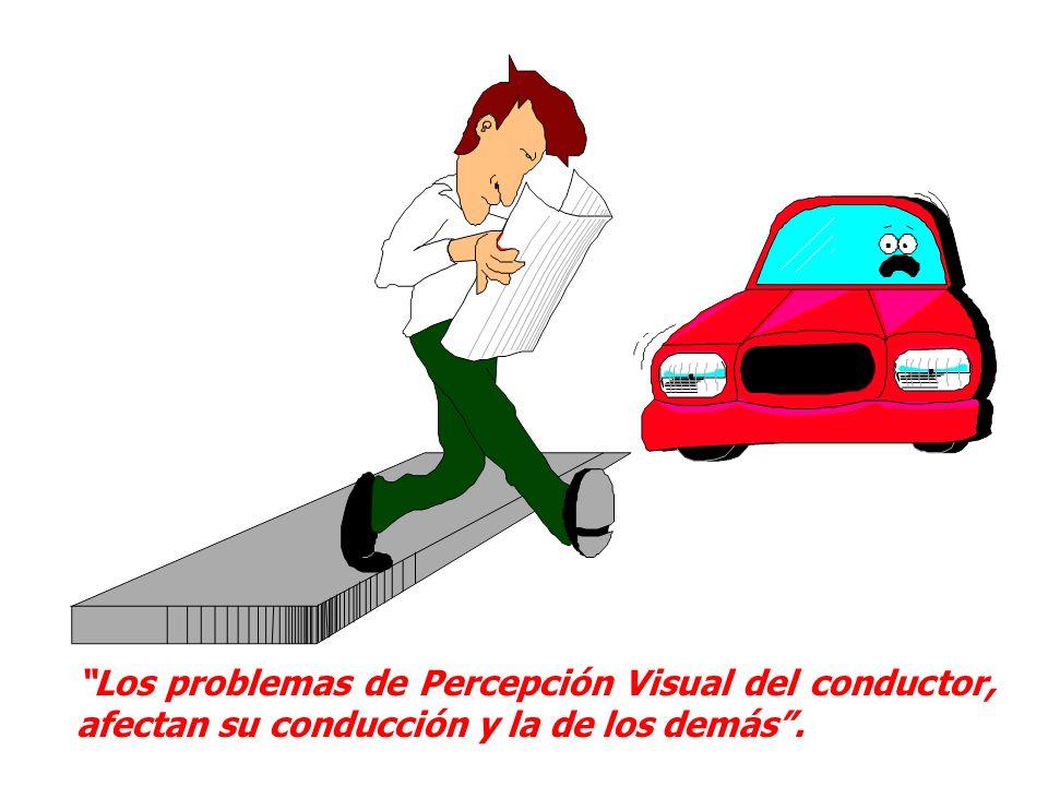Los problemas de Percepción Visual del conductor, afectan su conducción y la de los demás .