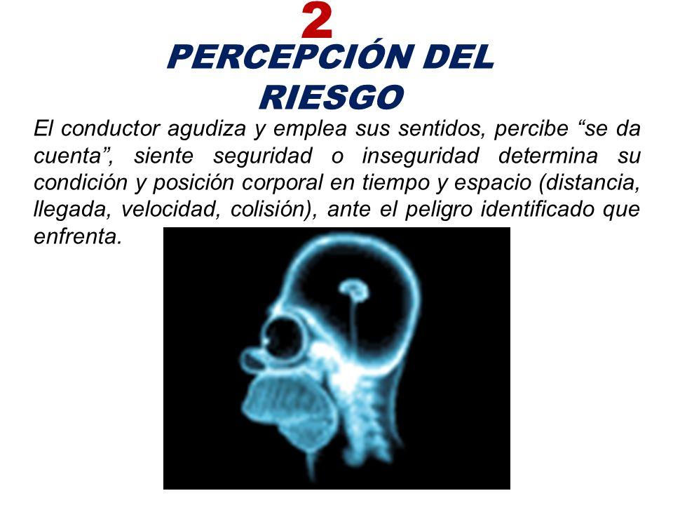 2 PERCEPCIÓN DEL RIESGO.
