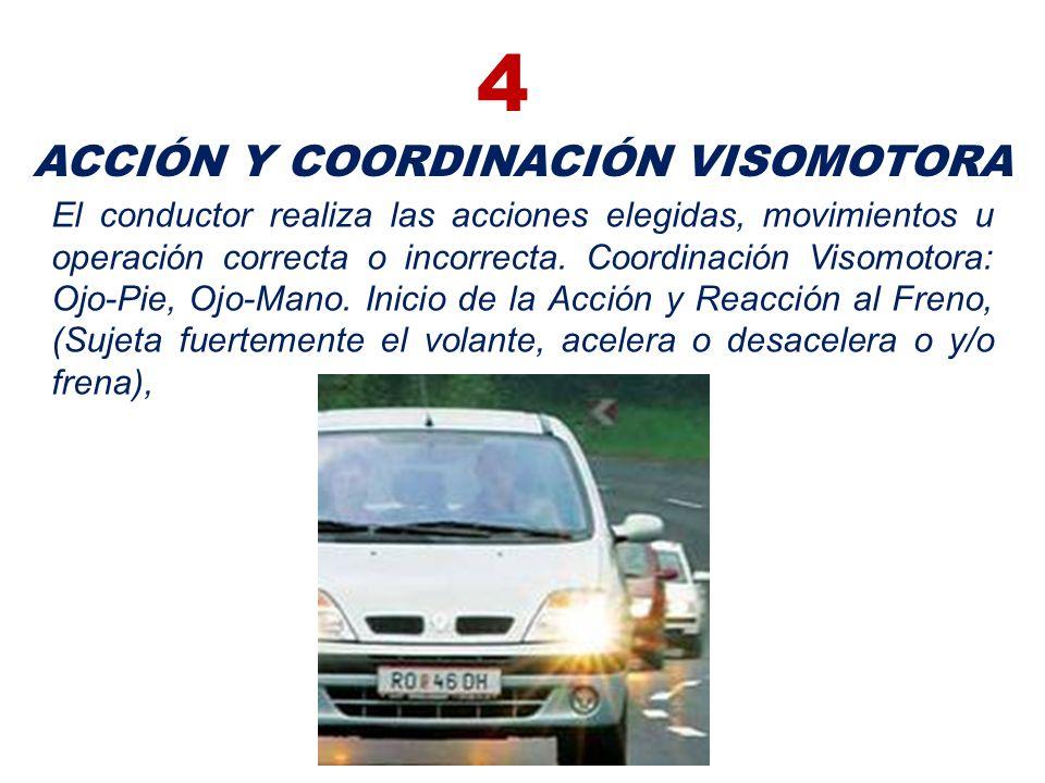 ACCIÓN Y COORDINACIÓN VISOMOTORA