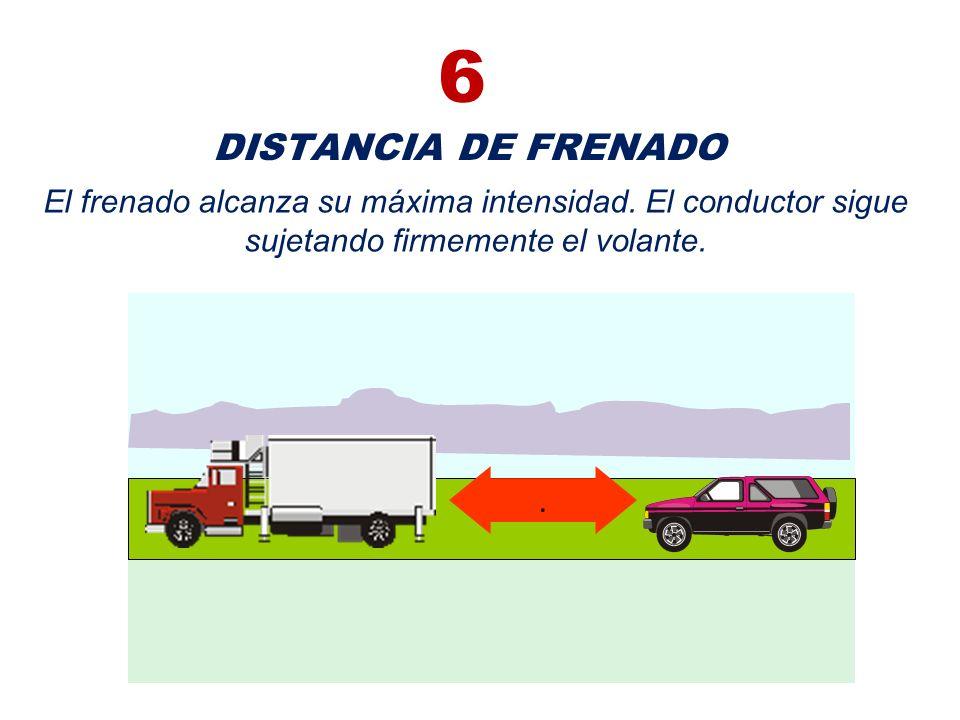 6 DISTANCIA DE FRENADO. El frenado alcanza su máxima intensidad. El conductor sigue sujetando firmemente el volante.