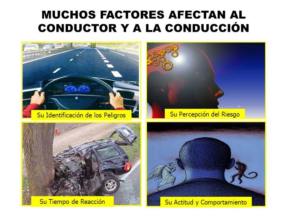 MUCHOS FACTORES AFECTAN AL CONDUCTOR Y A LA CONDUCCIÓN