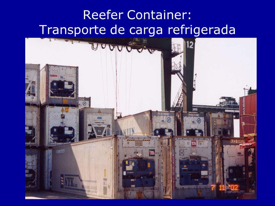 Reefer Container: Transporte de carga refrigerada