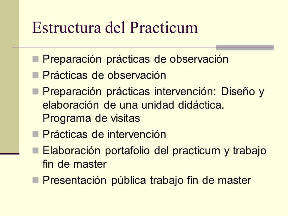 Estructura del Practicum