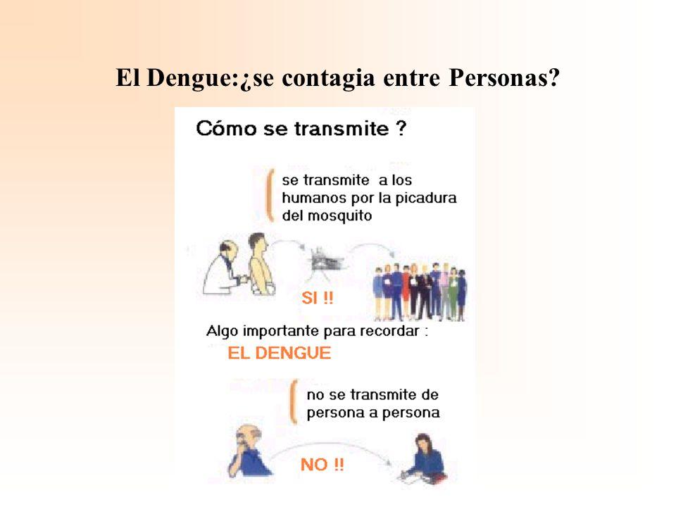 El Dengue:¿se contagia entre Personas