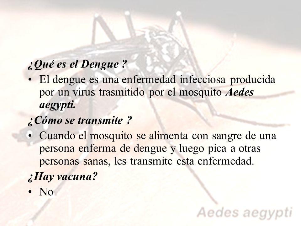 ¿Qué es el Dengue El dengue es una enfermedad infecciosa producida por un virus trasmitido por el mosquito Aedes aegypti.