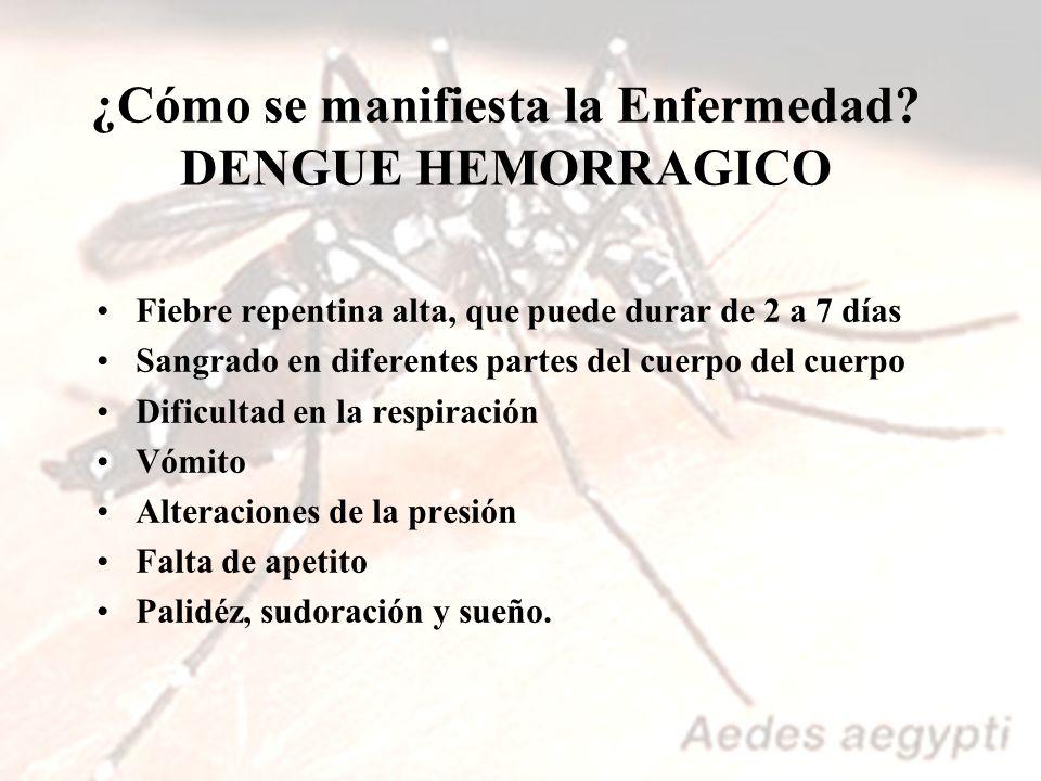 ¿Cómo se manifiesta la Enfermedad DENGUE HEMORRAGICO