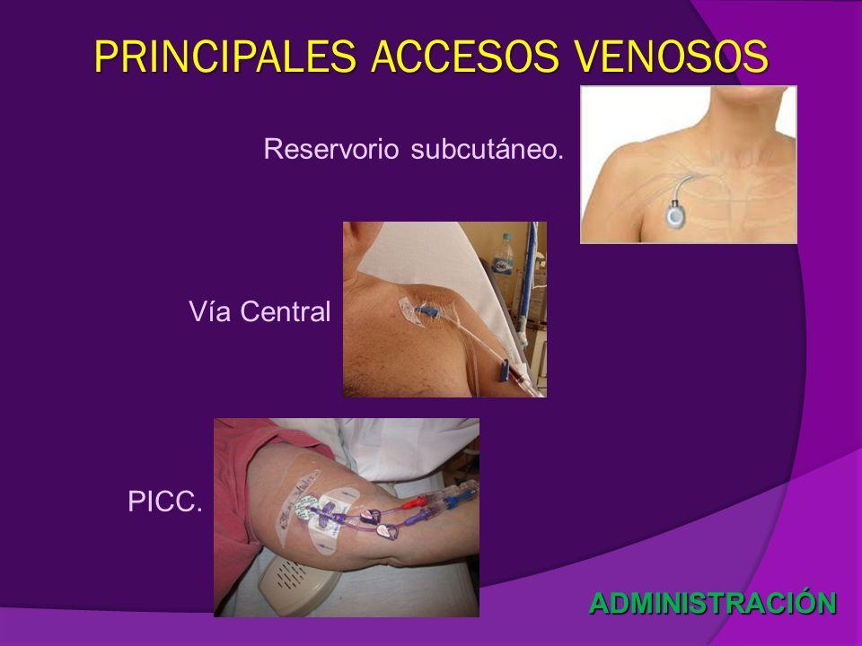 PRINCIPALES ACCESOS VENOSOS