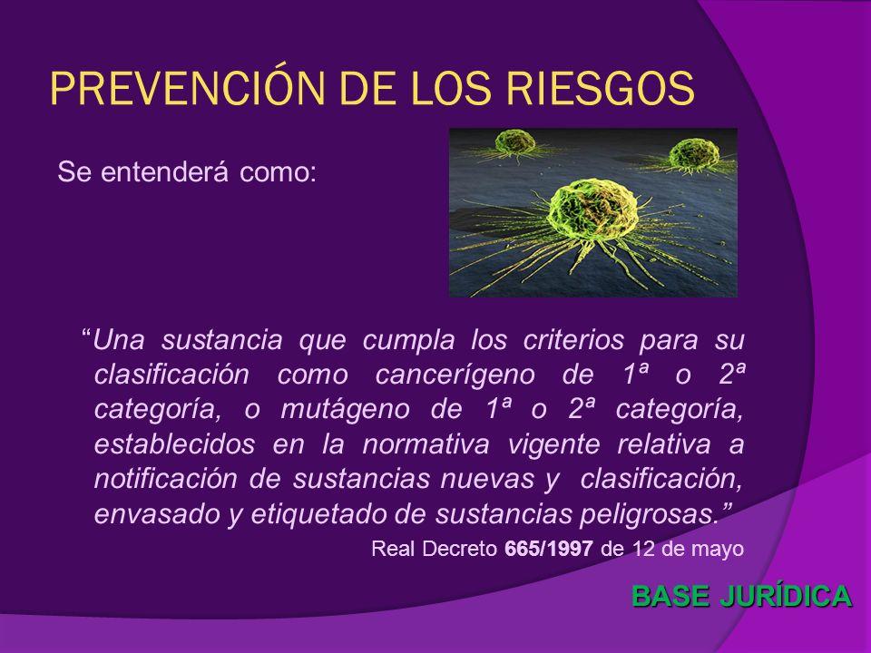 PREVENCIÓN DE LOS RIESGOS