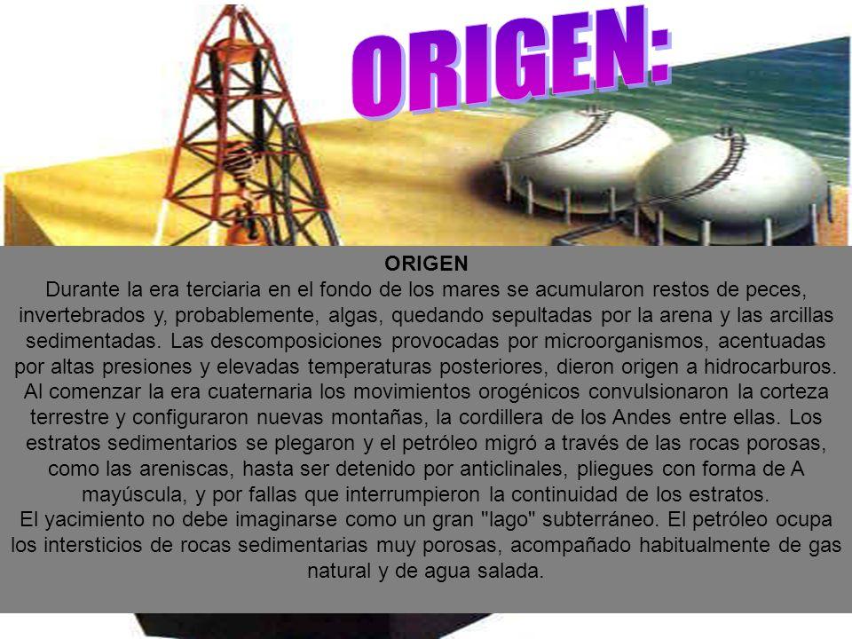 ORIGEN: ORIGEN.