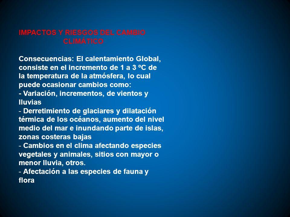 IMPACTOS Y RIESGOS DEL CAMBIO