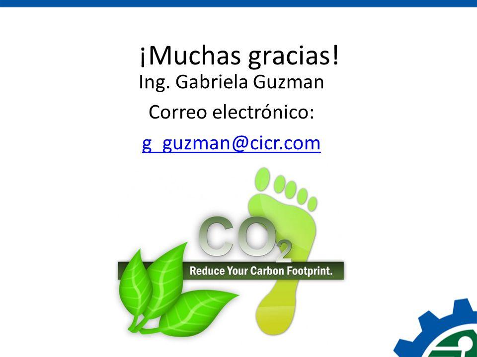 Ing. Gabriela Guzman Correo electrónico: g_guzman@cicr.com