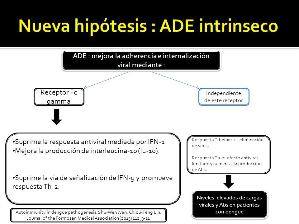 Nueva hipótesis : ADE intrinseco