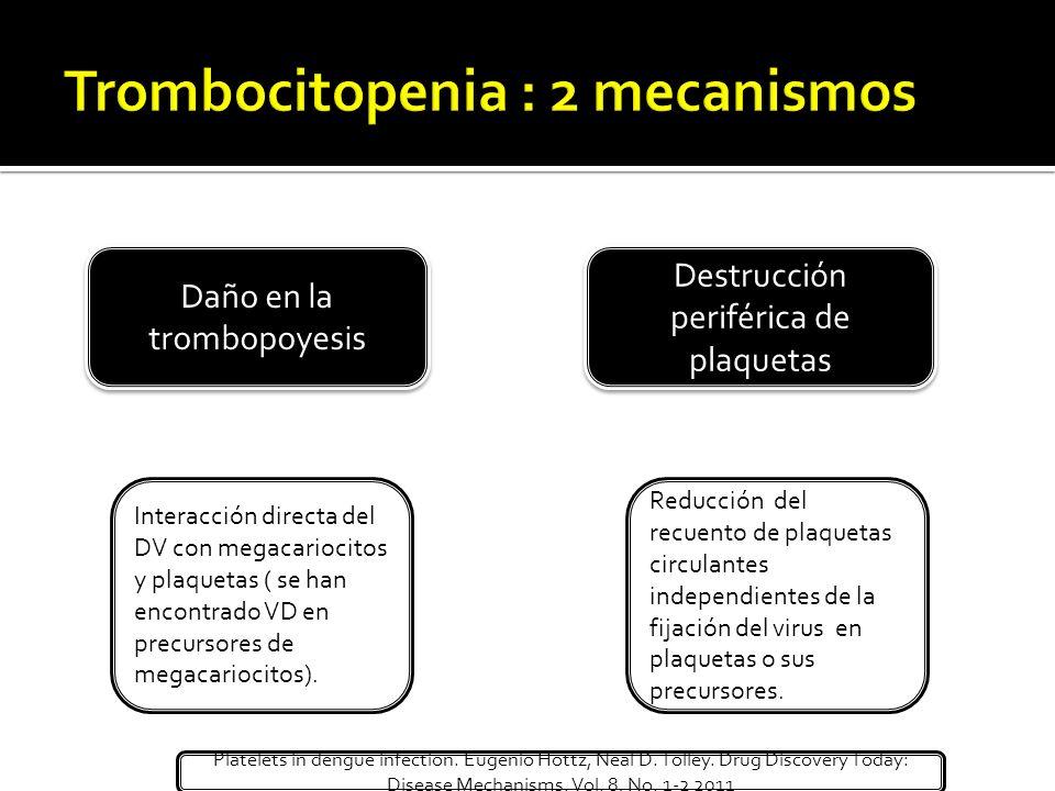 Trombocitopenia : 2 mecanismos