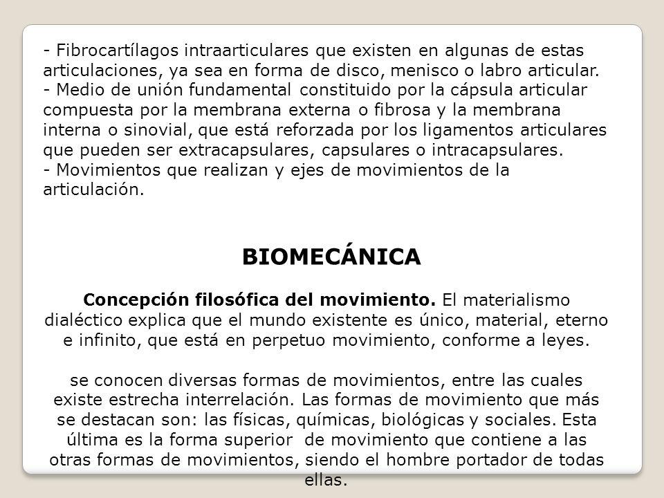 - Fibrocartílagos intraarticulares que existen en algunas de estas articulaciones, ya sea en forma de disco, menisco o labro articular.