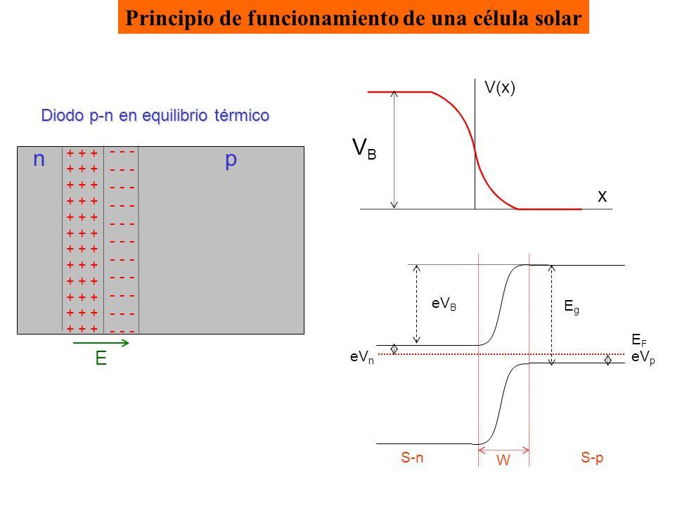 Diodo p-n en equilibrio térmico