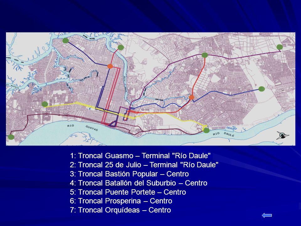 1: Troncal Guasmo – Terminal Río Daule 2: Troncal 25 de Julio – Terminal Río Daule 3: Troncal Bastión Popular – Centro 4: Troncal Batallón del Suburbio – Centro 5: Troncal Puente Portete – Centro 6: Troncal Prosperina – Centro 7: Troncal Orquídeas – Centro