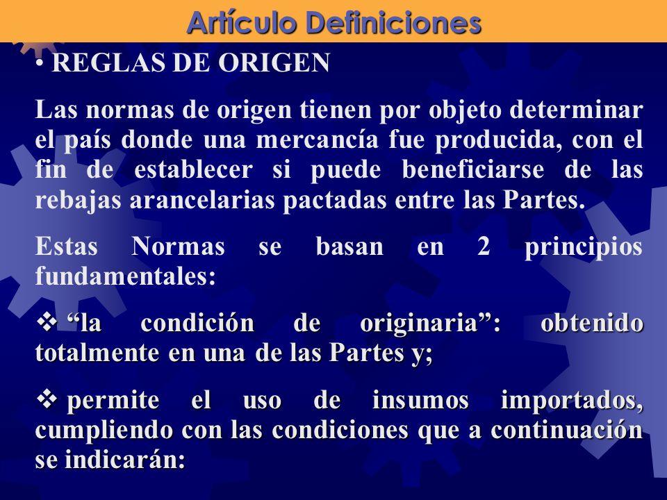 Artículo Definiciones