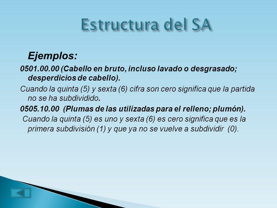 Estructura del SA Ejemplos:
