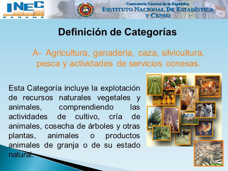 Definición de Categorías
