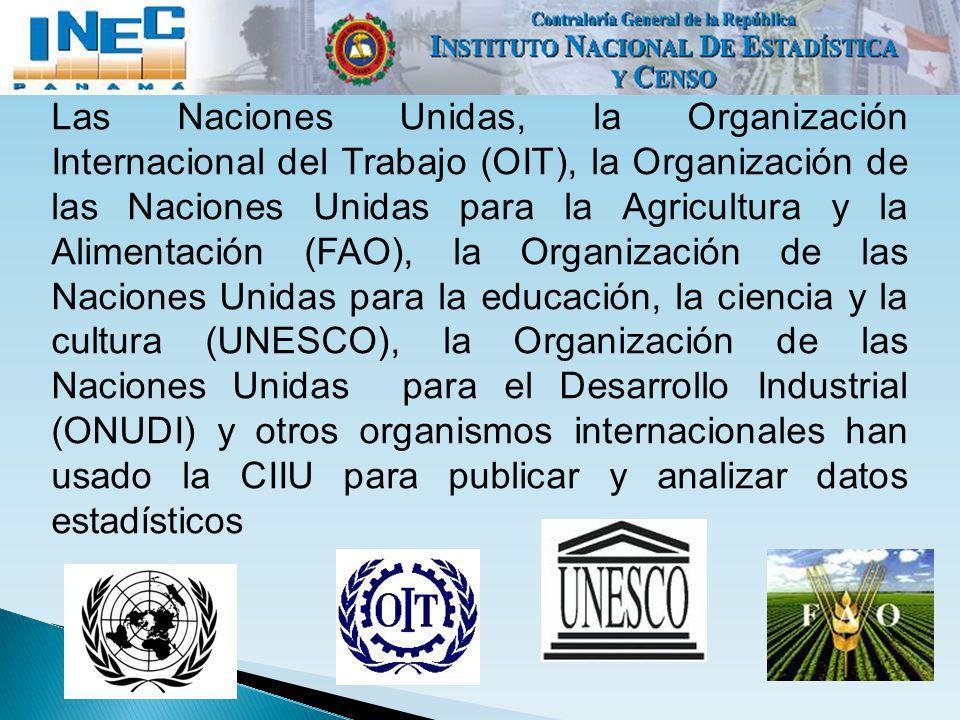 Las Naciones Unidas, la Organización Internacional del Trabajo (OIT), la Organización de las Naciones Unidas para la Agricultura y la Alimentación (FAO), la Organización de las Naciones Unidas para la educación, la ciencia y la cultura (UNESCO), la Organización de las Naciones Unidas para el Desarrollo Industrial (ONUDI) y otros organismos internacionales han usado la CIIU para publicar y analizar datos estadísticos
