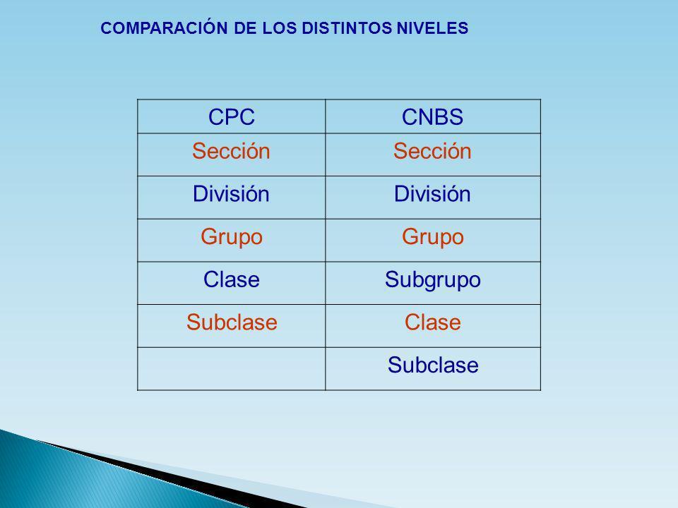 CPC CNBS Sección División Grupo Clase Subgrupo Subclase