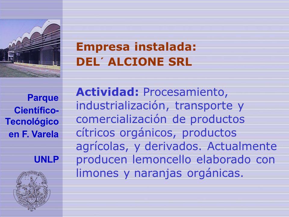 Empresa instalada: DEL´ ALCIONE SRL