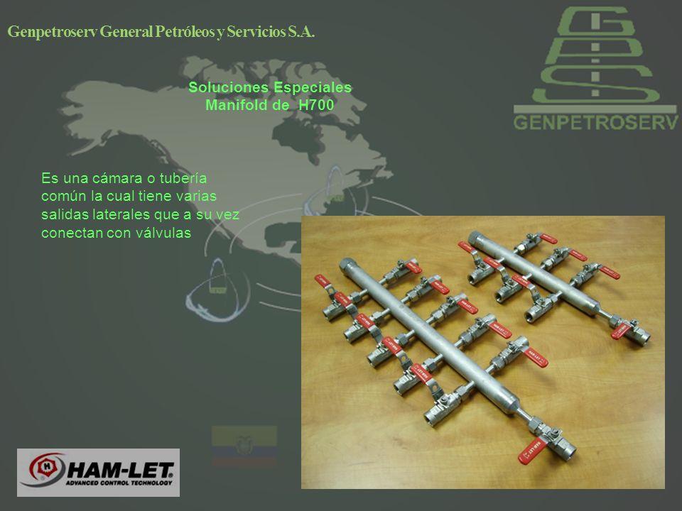 Soluciones Especiales Manifold de H700