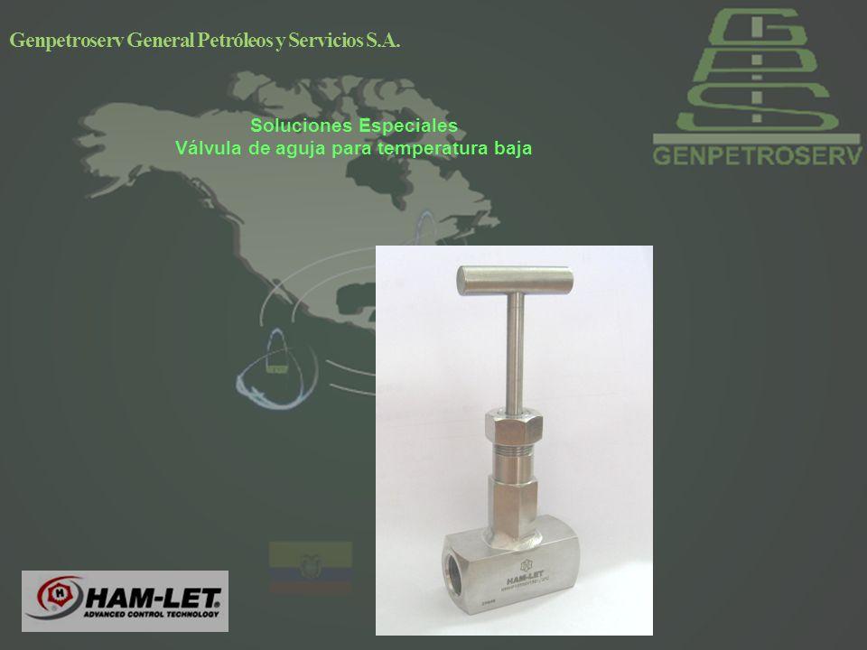 Soluciones Especiales Válvula de aguja para temperatura baja