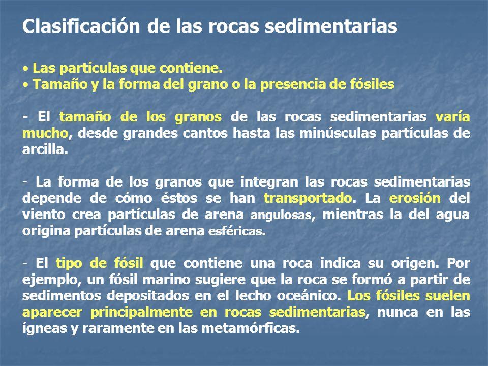 Clasificación de las rocas sedimentarias