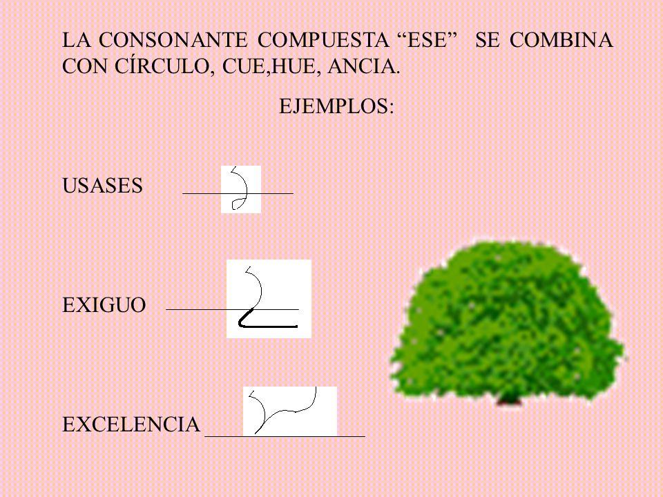 LA CONSONANTE COMPUESTA ESE SE COMBINA CON CÍRCULO, CUE,HUE, ANCIA.