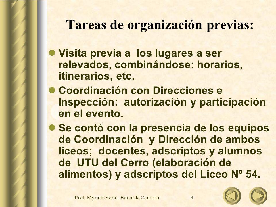 Tareas de organización previas: