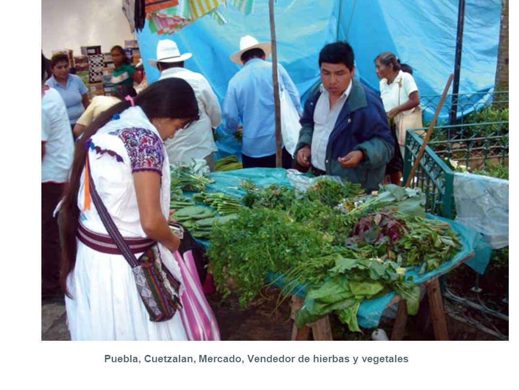 Puebla, Cuetzalan, Mercado, Vendedor de hierbas y vegetales