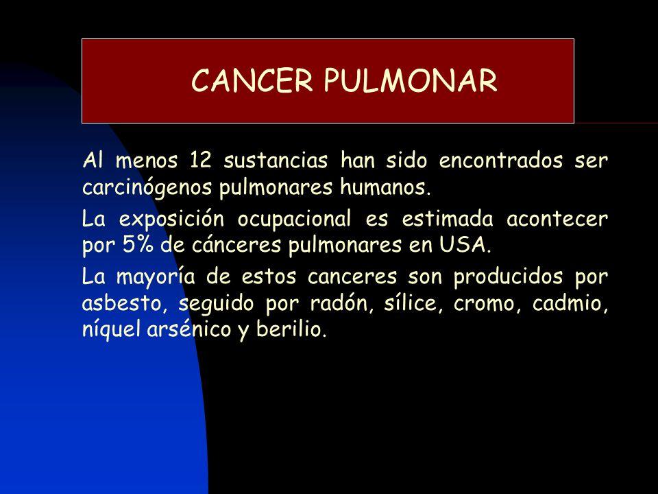 CANCER PULMONAR Al menos 12 sustancias han sido encontrados ser carcinógenos pulmonares humanos.