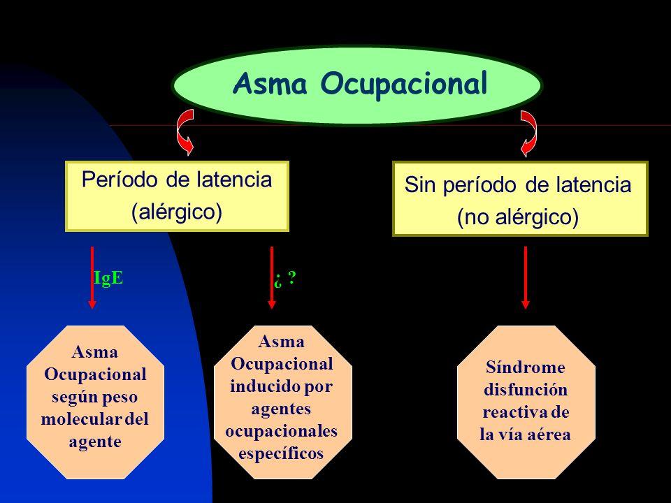Período de latencia (alérgico)