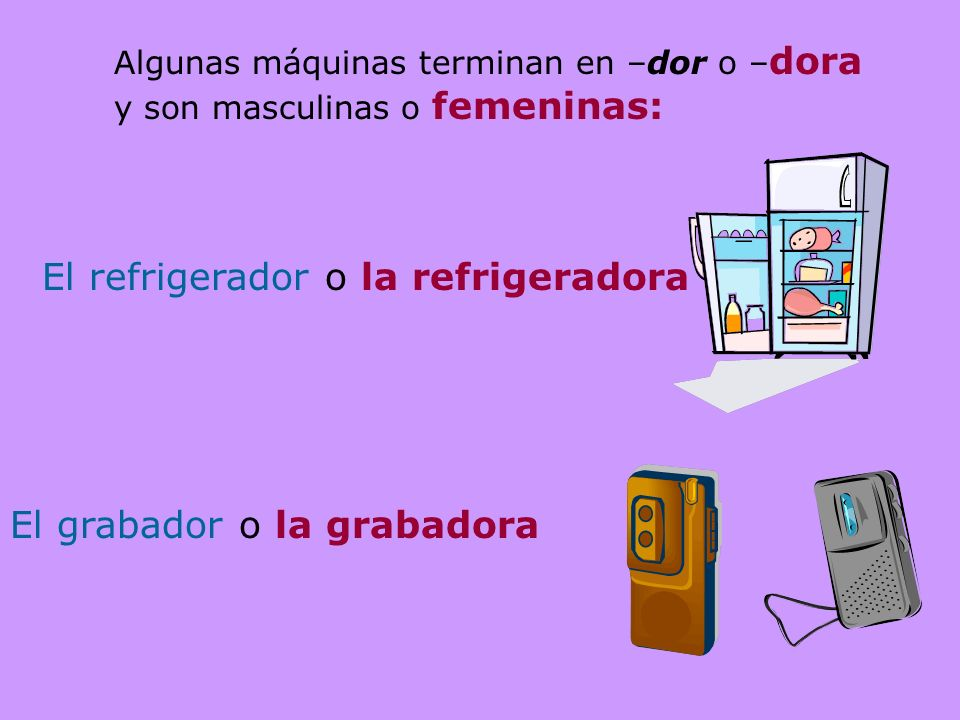El refrigerador o la refrigeradora