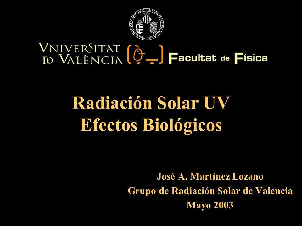 José A. Martínez Lozano Grupo de Radiación Solar de Valencia Mayo 2003