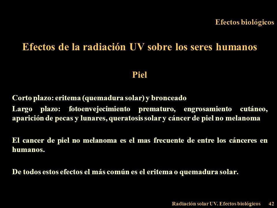 Efectos de la radiación UV sobre los seres humanos