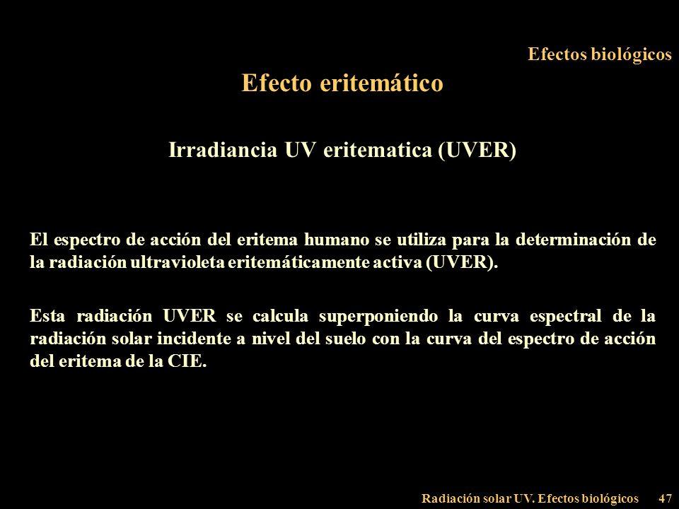 Irradiancia UV eritematica (UVER)