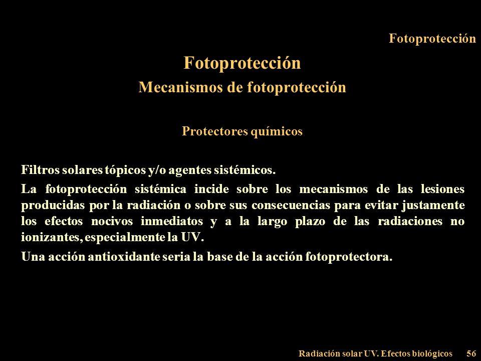 Mecanismos de fotoprotección