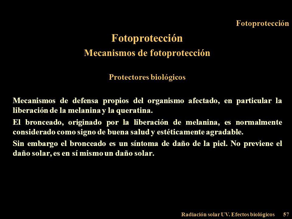Mecanismos de fotoprotección Protectores biológicos
