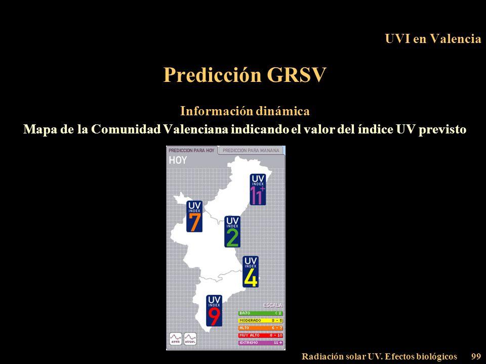 Predicción GRSV UVI en Valencia Información dinámica