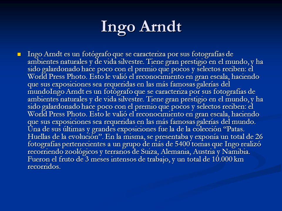Ingo Arndt