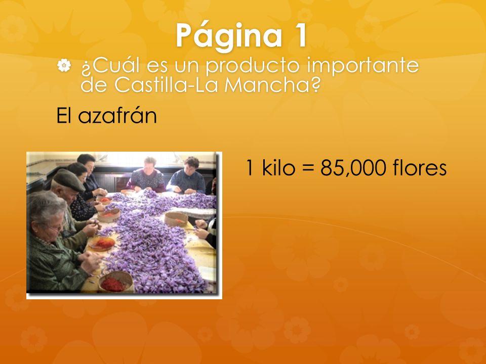 Página 1 El azafrán 1 kilo = 85,000 flores