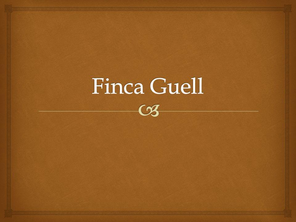 Finca Guell