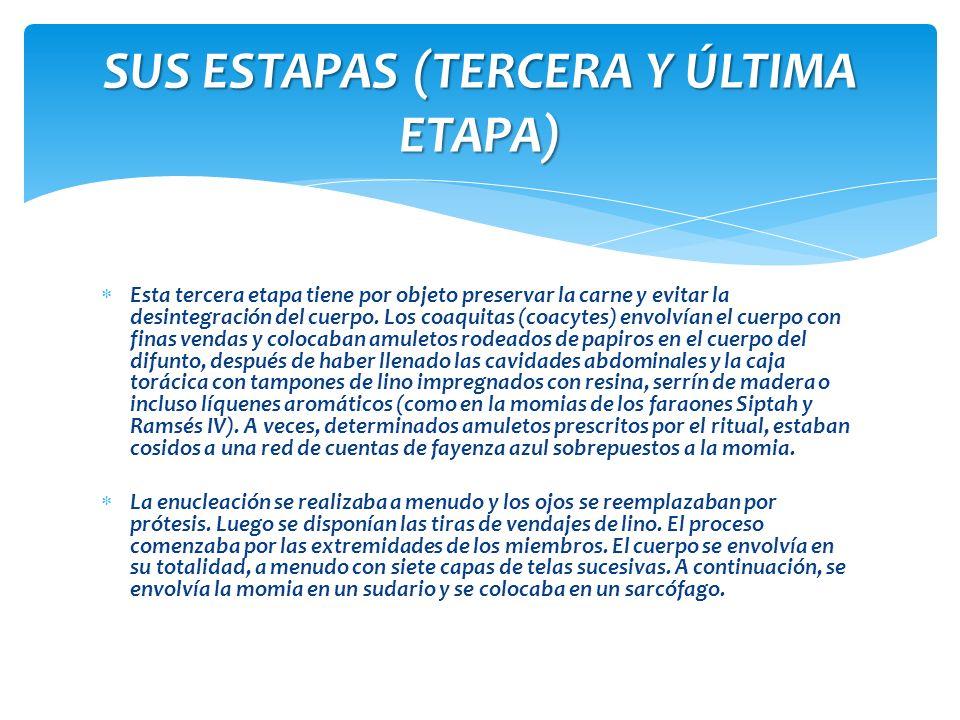 SUS ESTAPAS (TERCERA Y ÚLTIMA ETAPA)
