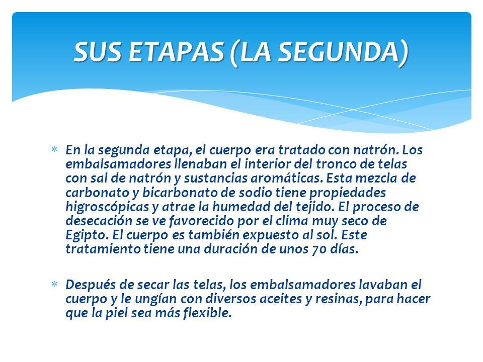 SUS ETAPAS (LA SEGUNDA)