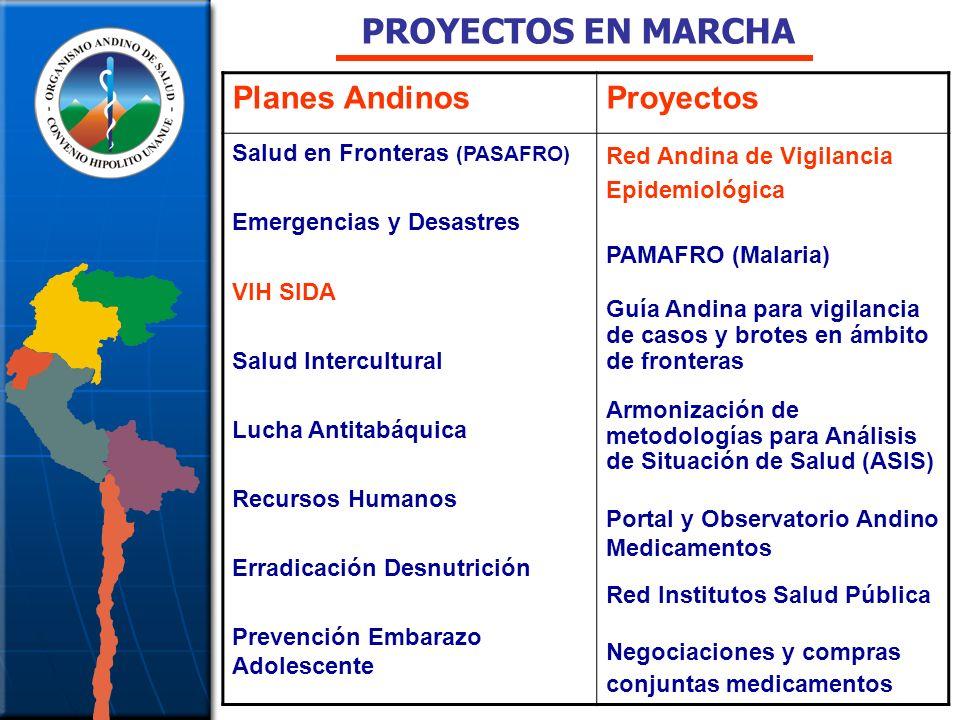 PROYECTOS EN MARCHA Planes Andinos Proyectos
